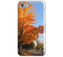 Autumn Colors (4) iPhone Case/Skin