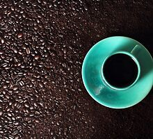 From Bean to Cup by Tracy Friesen