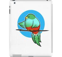 Cute Resplendent Quetzal iPad Case/Skin