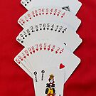 Deck of Cards by AnnDixon