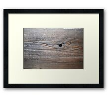 Sleek Swimmers - one with goggles. Framed Print