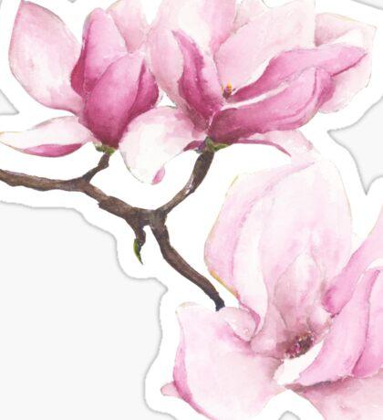 Watercolor Magnolia Blossoms Sticker