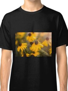 Sunshine Haze on Black-Eyed Susans Classic T-Shirt