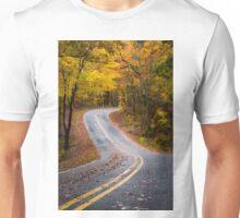 A Palette of Gold  Unisex T-Shirt