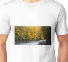 A Veil of Color Unisex T-Shirt