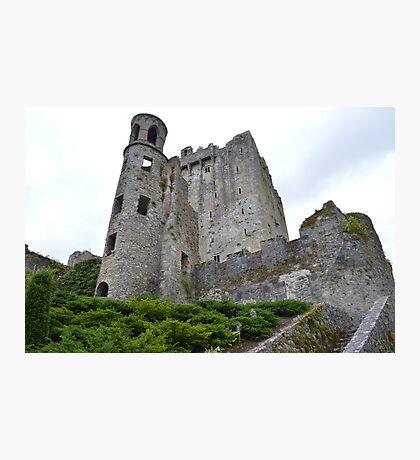 Blarney. Photographic Print