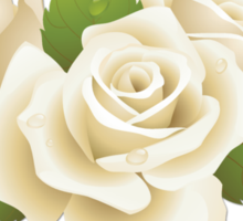 Roses, Flowers, Leaves, Petals - White Green   Sticker