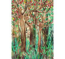 Walking through the Forest - watercolor painting collage Photographic Print