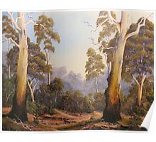 The Scent Of Gumtrees In Australia Poster