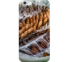 Honey Melon Guts iPhone Case/Skin