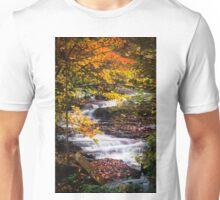 Autumn Cascade  Unisex T-Shirt