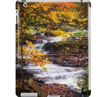 Autumn Cascade  iPad Case/Skin