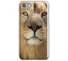 ASIATIC Lion, not an African Lion iPhone Case/Skin