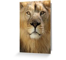 ASIATIC Lion, not an African Lion Greeting Card