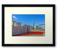 Poppies in the Moat Framed Print