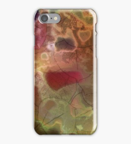 Vibrant Decay 3 iPhone Case/Skin