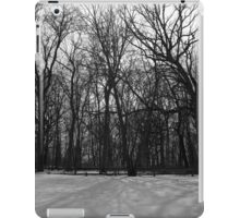 Snow in Black and White iPad Case/Skin