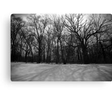 Snow in Black and White Canvas Print