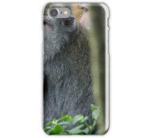Ubud Monkey Forests iPhone Case/Skin