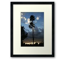 Two lone palms Framed Print