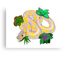 Banana Ball Python Canvas Print