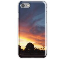 Painting by nature iPhone Case/Skin