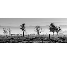 Rural Life Photographic Print