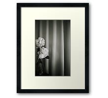 Analog silver gelatin 35mm film photo of white rose flowers in vase Framed Print
