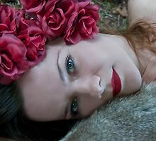 Tamed Rose by Denise Abé