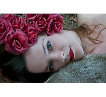 Tamed Rose Photographic Print