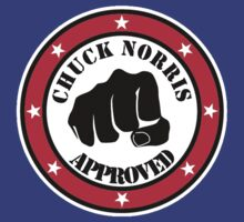 I am chuck norris approved by datthomas