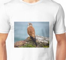 Kestrel at Turrimetta Beach Unisex T-Shirt