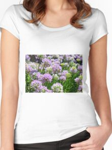 Many pink purple round flowers in the garden Women's Fitted Scoop T-Shirt