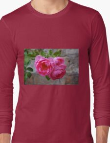 Group of pink roses Long Sleeve T-Shirt
