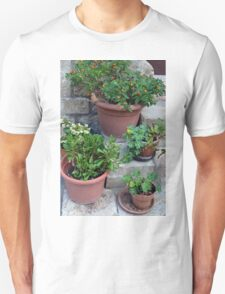Flower pots on stone stairs Unisex T-Shirt