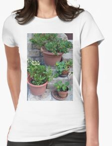 Flower pots on stone stairs Womens Fitted T-Shirt