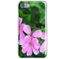 Pink flowers on green leaves background iPhone Case/Skin