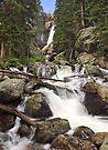 Ouzel Falls, Colorado by Tamas Bakos