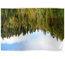 abstract autumn pine forest reflection in river Poster