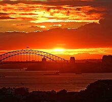 Another spectacular Sydney sunset by jozi1