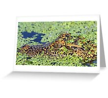 Baby gator in camouflage Greeting Card