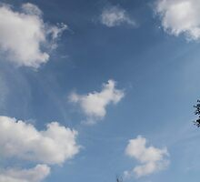 Reach for the Clouds by nel-photography