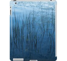 Green and Blue Serenity - Smooth Wetland Morning iPad Case/Skin