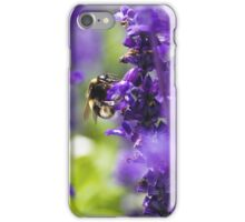 Bumble been in lavender iPhone Case/Skin