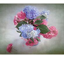 Endless Summer Hydrangeas and Roses Still Life Photographic Print