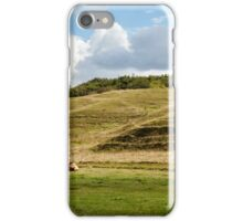 Danish landscape iPhone Case/Skin