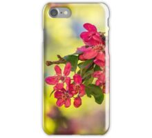 red flowers of apple tree on a grass iPhone Case/Skin