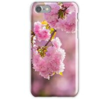 pink flowers of sakura branches above grass iPhone Case/Skin