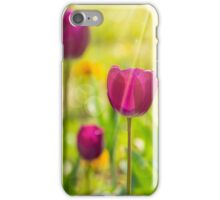 purple tulip on color blurred background  iPhone Case/Skin