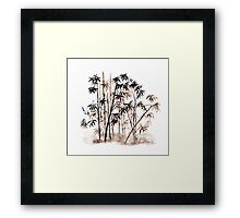 Bamboo  forest Framed Print